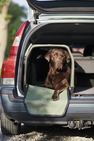 Transportbur till Hund L69 x H53 x B52 cm