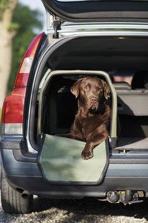 Transportbur till Hund L81 x H58 x B58 cm